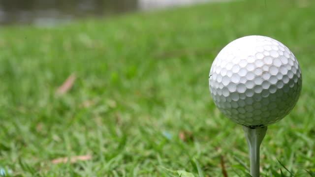 vidéos et rushes de balle de golf sur le tee - tee de golf