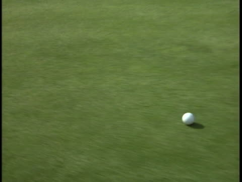 a golf ball rolls on a golf course. - golf ball stock videos & royalty-free footage