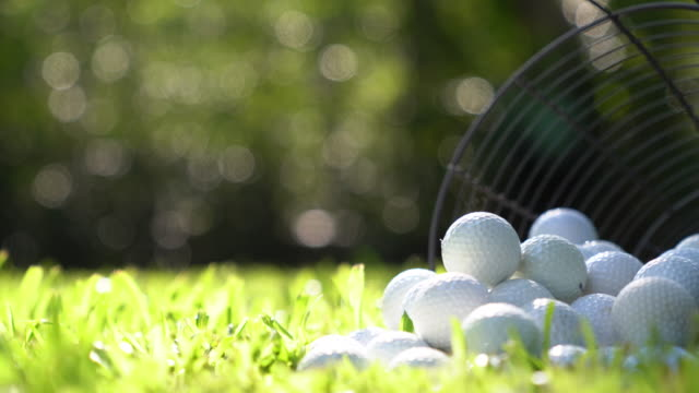 golf balls in basket on green grass for practice - golf ball stock videos & royalty-free footage