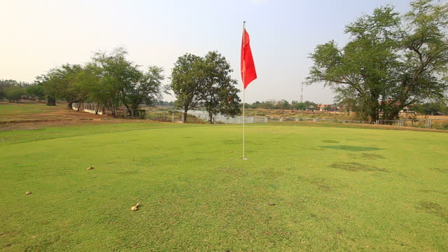 golf course putting green with flag - putting green stock videos & royalty-free footage