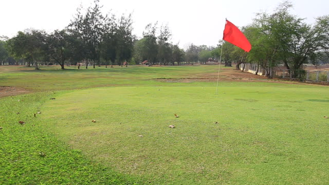 golf course putting green with flag - golf course stock videos and b-roll footage