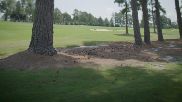 Campo de Golf - Fairway Escénica