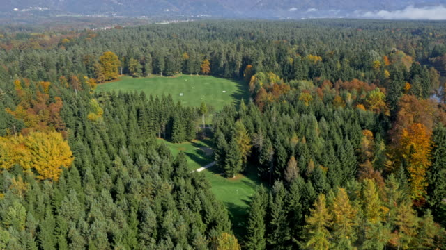 aerial golf course surrounded by a forest on a sunny day - golf course stock videos and b-roll footage