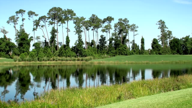 golf course - pond stock videos and b-roll footage