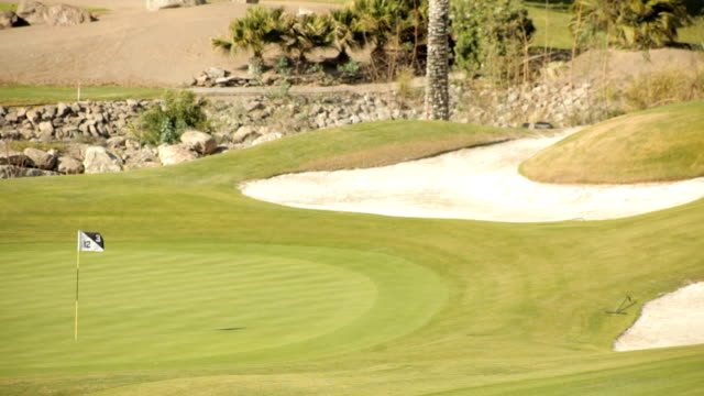 golf course - golf flag stock videos and b-roll footage