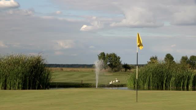 vídeos y material grabado en eventos de stock de campo de golf - bandera de golf