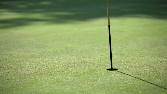 vidéos et rushes de ms golf flagpole in hole, ball bounces onto grass and goes straight in the hole / canterbury, kent, uk - golf