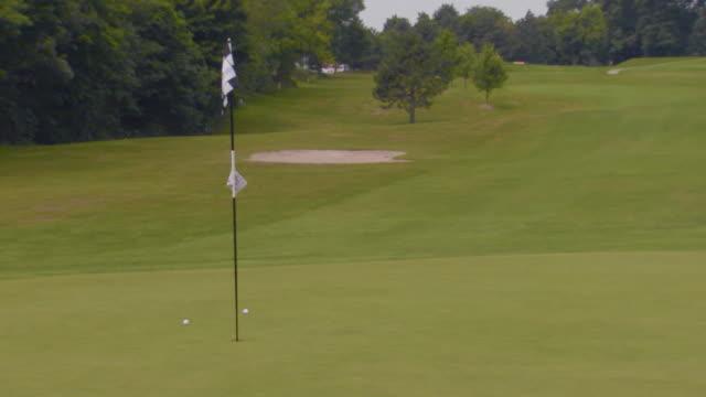 golf green - bandierina da golf video stock e b–roll