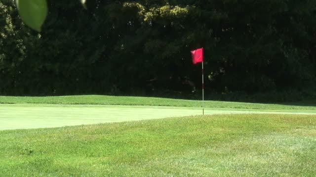 vídeos y material grabado en eventos de stock de golf polos-hd de 1080 de 60i - bandera de golf