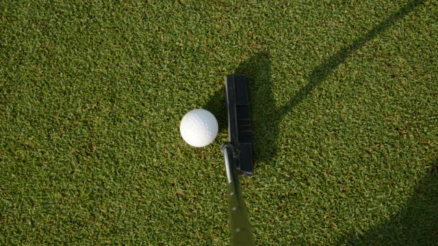 golf practice. - putting green stock videos and b-roll footage