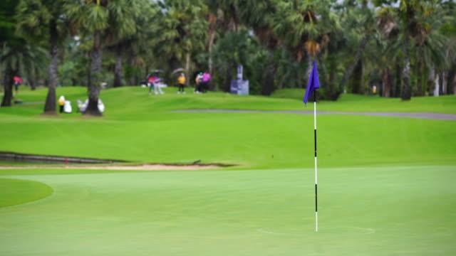 vídeos y material grabado en eventos de stock de bandera conceptual del deporte del golf - bandera de golf