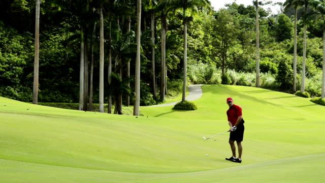 vídeos y material grabado en eventos de stock de de golf - golfista