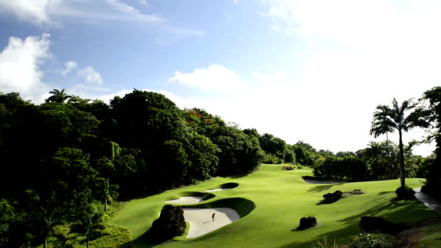 ゴルフ - ショットを決める点の映像素材/bロール