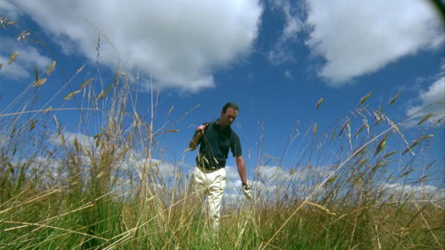 MS, LA, Golfer looking for lost ball in grass in meadow, Saint Ferme, Gironde, France