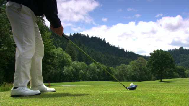 golfer pulling - see other clips from this shoot 1271 stock videos and b-roll footage