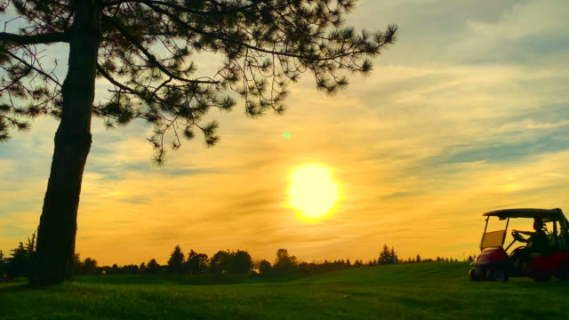 golfer travel in golf cart against sun in sunset and a tree with branches - golf cart stock videos & royalty-free footage