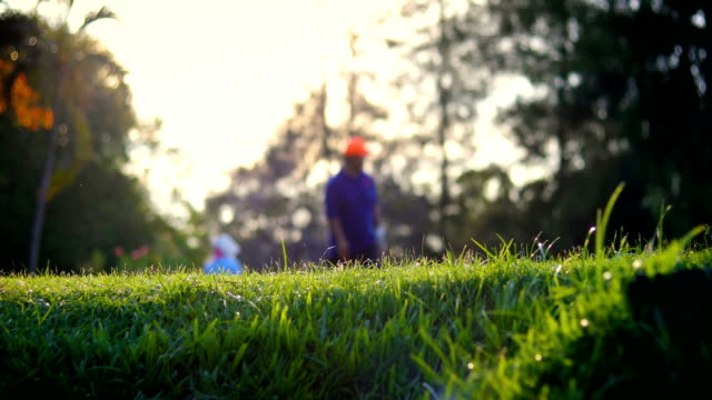 golfers on golf course in the morning - golfer stock videos and b-roll footage
