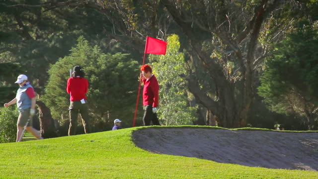 WS Golfers putting on the green at Albert Park / Melbourne, Victoria, Australia