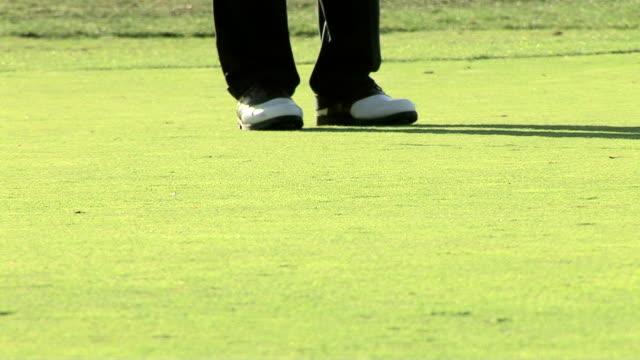 golfing - bandierina da golf video stock e b–roll