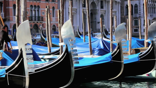 MS Gondolas floating in water, tied up as tourists walk behind / Venice, Italy