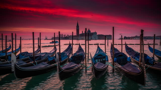 gondolas in venice at sunrise, italy - moored stock videos & royalty-free footage