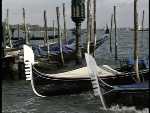 gondolas in venice there is an opening shot of gondola row boats in the water just floating without passengers in a medium shot there is a dissolve... - sport video stock e b–roll