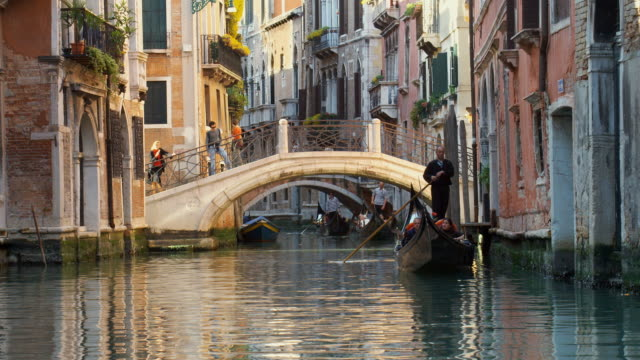 ms, gondolas on canal, venice, italy - venice italy stock videos and b-roll footage
