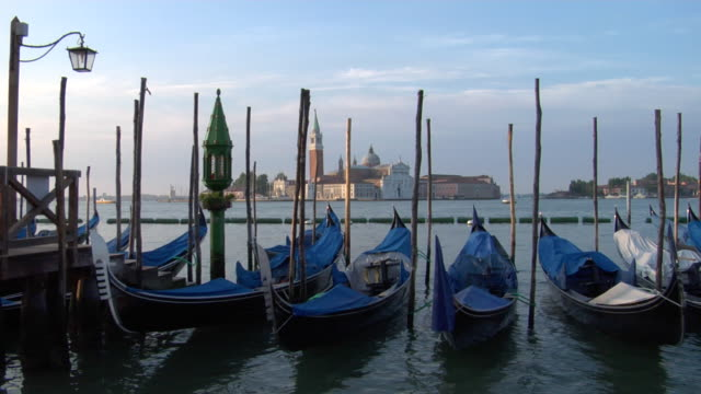 ms, gondolas on grand canal, san giorgio maggiore in background, early morning, venice, italy - venedig stock-videos und b-roll-filmmaterial