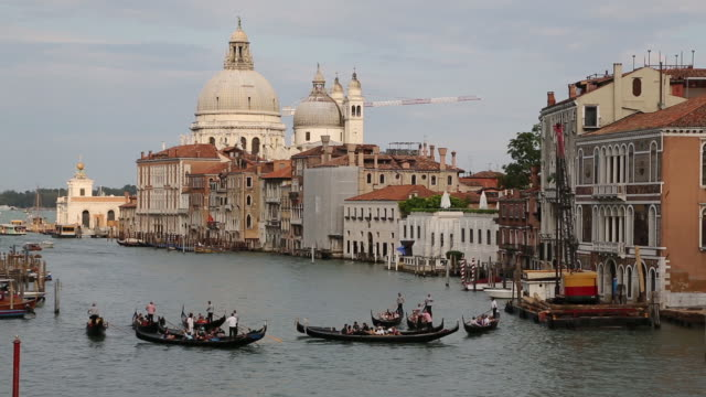 gondolas on the grand canal - flotilla stock videos & royalty-free footage