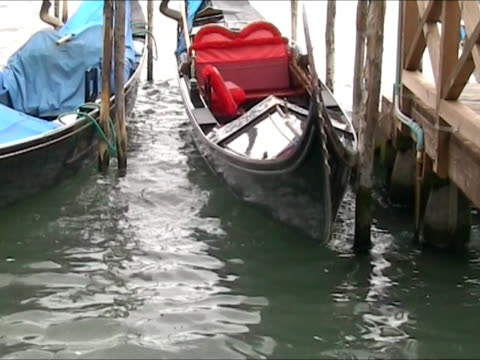 gondolas parked in san mark square - venice - grand canal venice stock videos & royalty-free footage