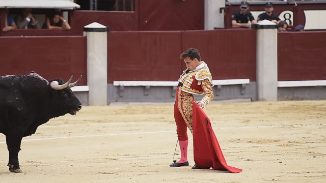 gonzalo caballero spanish matador gored twice in thigh and groin while bullfighting - 動物を使うスポーツ点の映像素材/bロール
