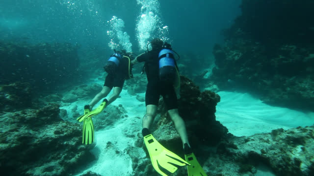 good looking young couple diving on coral reef. guadeloupe, caribbean. - aqualung diving equipment stock videos & royalty-free footage