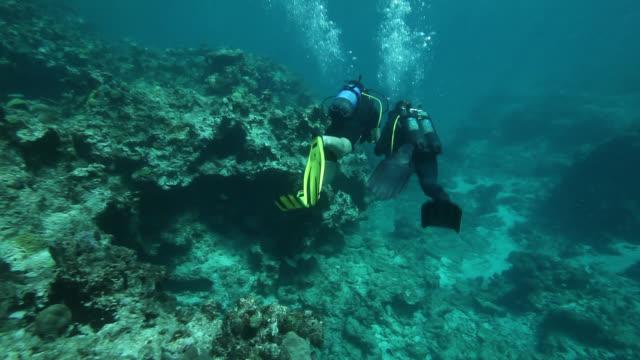 vídeos y material grabado en eventos de stock de good looking young couple diving on coral reef - escafandra autónoma