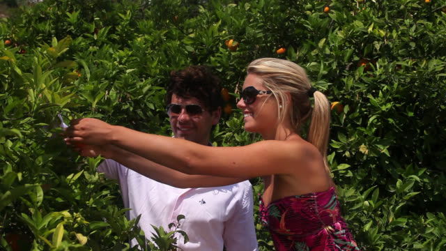 Good Looking Young Couple in front of an Orange Tree
