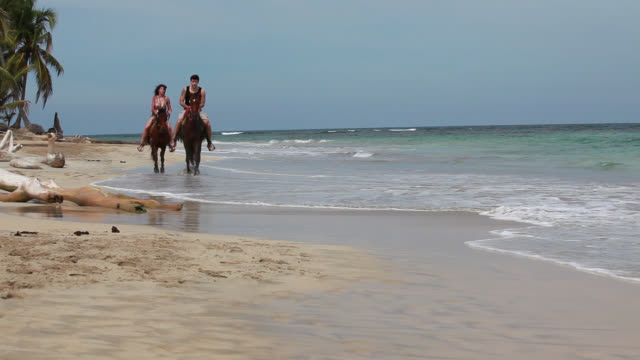 good looking young couple riding horses on beach - punta cana stock videos and b-roll footage