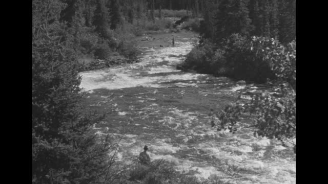 Good shot of rapids flowing over rocks on Kluane River / Beauty shot of rippling river / rippling river PAN to fisherman standing on rock in river...