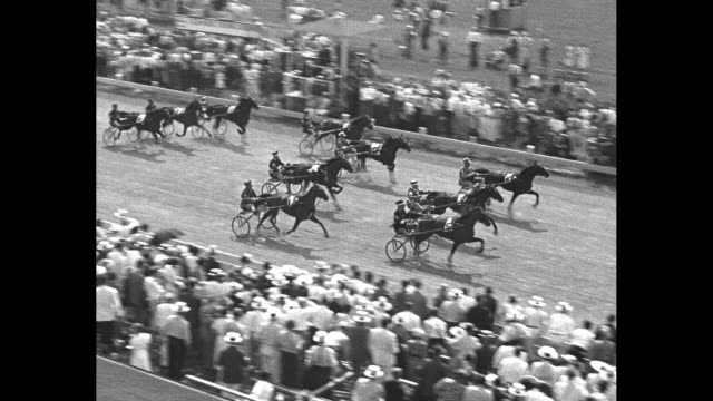good time park racetrack with trotters parading down the track, crowds lining both sides of track / closer view of trotters and spectators / crowd in... - bridle stock videos & royalty-free footage