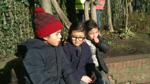 goose green academy primary school take on air pollution; england: london: east dulwich: goose green primary school: ext pull focus ivy leaves man... - dulwich stock videos & royalty-free footage
