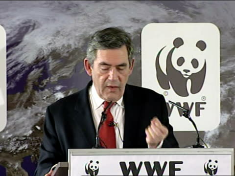 gordon brown speech on climate change; last year i asked the secretaries of state for environment and business to chair a commission of experts on... - improvement stock videos & royalty-free footage