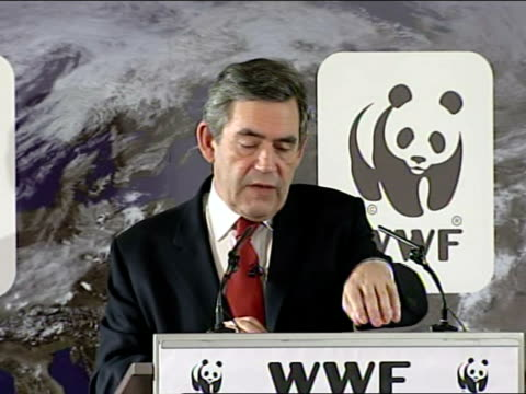 gordon brown speech on climate change; within a decade our aim is that every householder able to do so fits loft or cavity wall insulation, installs... - responsibility stock videos & royalty-free footage