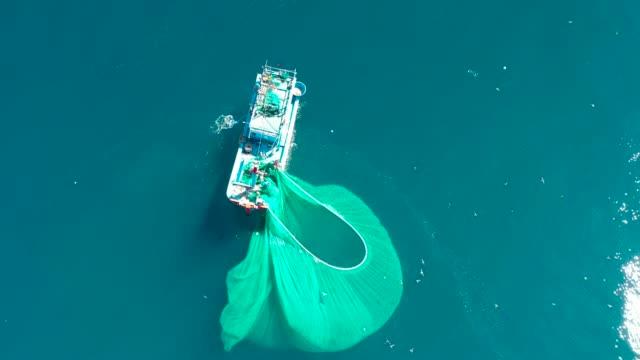 vidéos et rushes de gorgeous anchovy-catching scenes in hon yen islet, aerial view from phu yen province, vietnam. - industrie de la pêche
