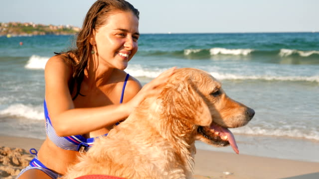 gorgeous girl pets her golden retriever dog on the beach - golden retriever stock videos and b-roll footage