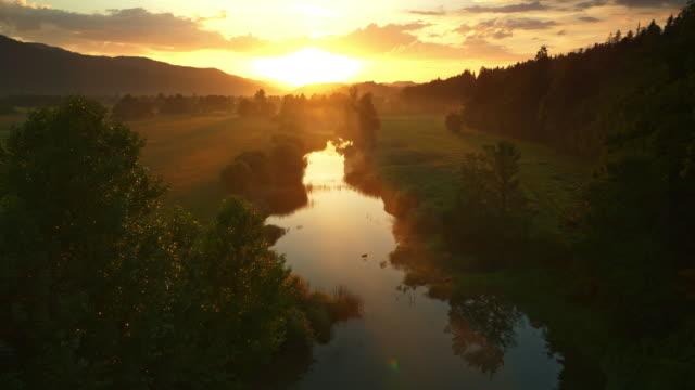 aerial gorgeous golden sunrise over the river - serenità video stock e b–roll