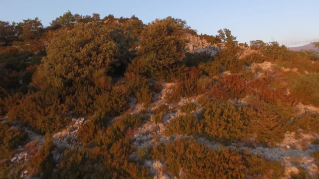Gorges du Verdon gorge at dusk, aerial view by drone