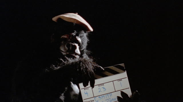 Gorilla in beret holding production slate before camera / clapping sticks on slate and walking away