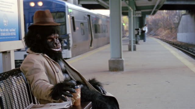 gorilla in trenchcoat sitting on bench on subway platform and drinking coffee / train pulling up / pleasantville, new york - eccentric stock videos & royalty-free footage