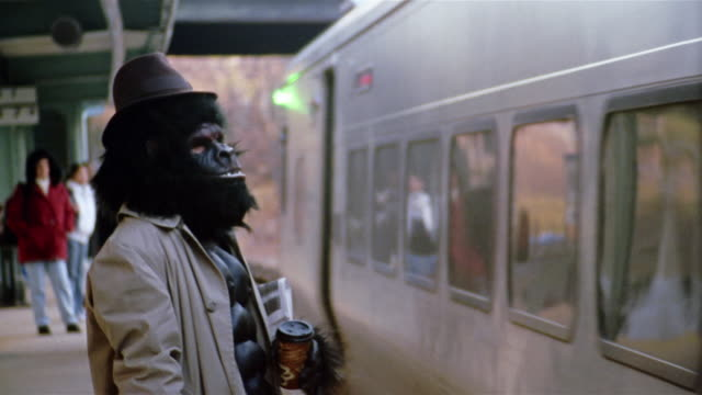Gorilla in trenchcoat waiting for train on subway platform / train pulling up to platform / Pleasantville, New York