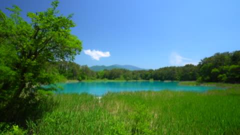 vidéos et rushes de goshiki-numa, fukushima, japon - étang