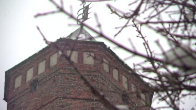 vídeos de stock e filmes b-roll de gothic-renaissance town hall tower - forma de água