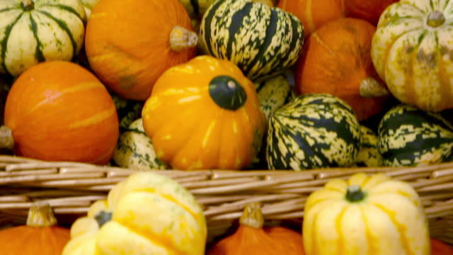 Gourds in supermarket